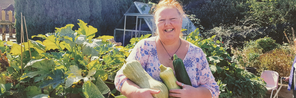 Harvesting squashes from allotment